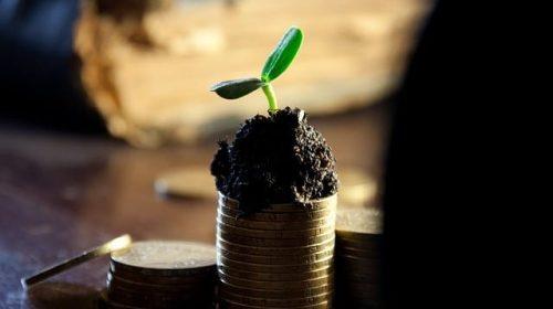 Ganho real nos investimentos: o que é e como calcular
