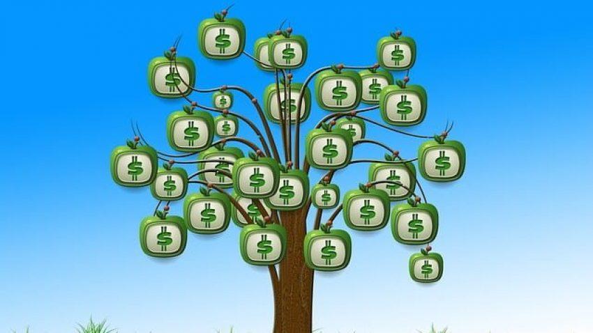 O que avaliar em uma instituição para investir