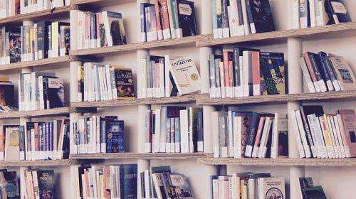 5 livros sobre investimentos para quem quer cuidar melhor do dinheiro