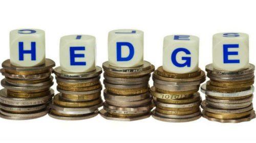 Hedge – O que isso significa?