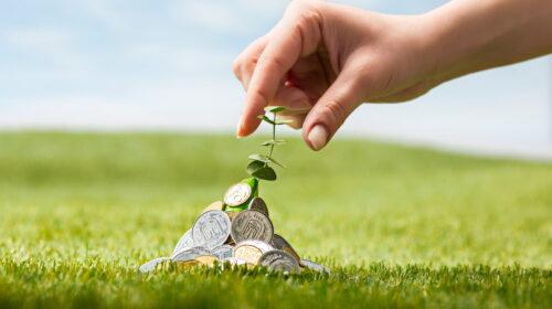 Investidor: veja opções com investimento baixo
